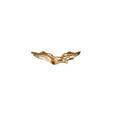 Civil Aeronautics Pilot pin