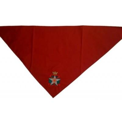 Military unit foulard